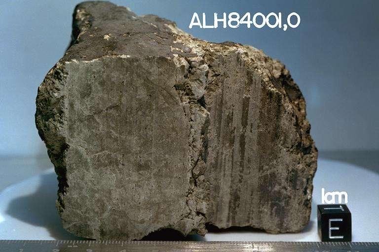 La fameuse météorite ALH84001, découverte en Antarctique en 1984 et dont l'origine martienne a été démontrée. En 1996, des chercheurs de la Nasa ont annoncé y avoir repéré des restes de micro-organismes minuscules évoquant nos bactéries. Une hypothèse infirmée par la suite. En revanche, cette roche d'origine magmatique contient des molécules carbonées produites par l'activité volcanique de la planète Mars. © Nasa-Caltech