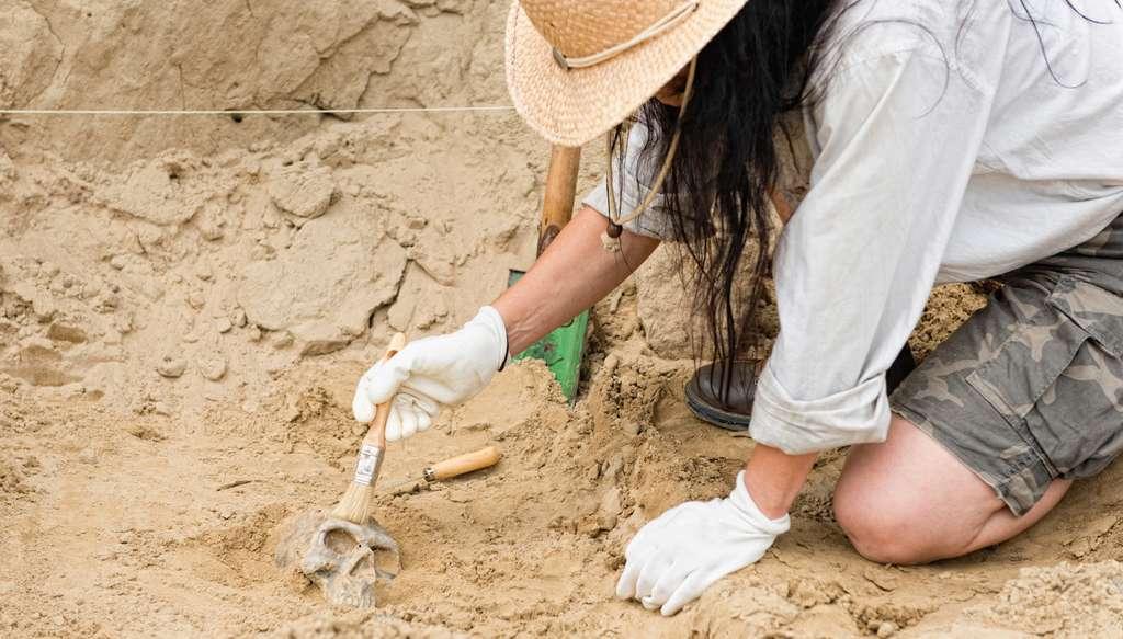 Chaque année, les archéologues français cherchent des bénévoles pour contribuer à leurs activités de terrain. Alors, pourquoi ne pas profiter de quelques jours de vacances pour participer à un véritable chantier de fouille? © Microgen, Fotolia