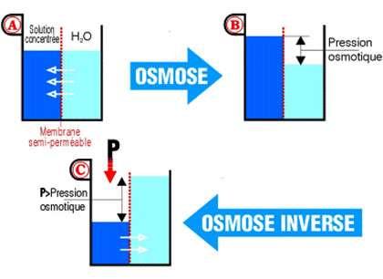 Osmose inverse.
