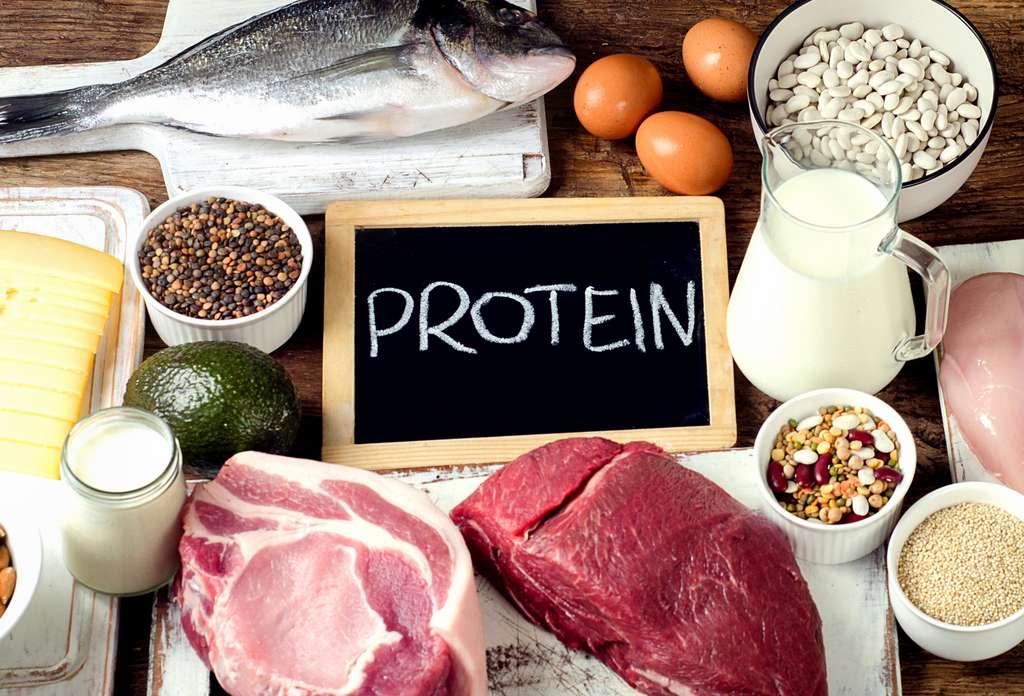L'alimentation doit être votre première et principale source de protéine (animale ou végétale). © bit24, Adobe Stock