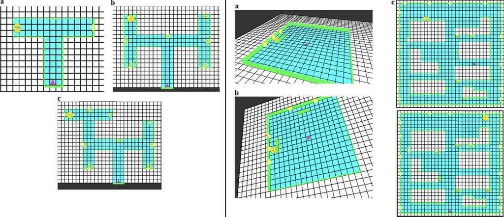 Ces différents schémas représentent la variabilité des labyrinthes utilisés. À chaque fois, le triangle violet représente le point de départ, le cercle jaune l'objectif à atteindre, et les rectangles jaunes les affiches avec les signaux indiquant le bon chemin. Dans la partie gauche, les labyrinthes en T avaient trois niveaux de difficulté. À droite, les schémas A et B représentent les espaces ouverts avec respectivement un et deux obstacles. Enfin, en C, on peut voir deux exemples de labyrinthes complexes, dans lesquels les jeunes enfants ont connu quelques difficultés. © Francine Dolins et al., American Journal of Primatology