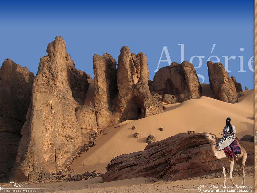 Algérie désert de Tassili