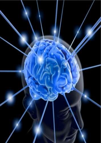 Le cerveau humain est bien plus gros que celui de ses plus proches cousins. Est-ce en partie grâce à miR-941 ? © Por adrines, arteyfotografia