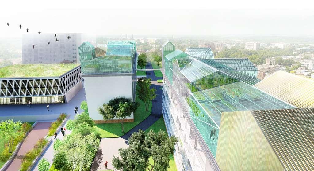 Transformer des barres de logements en fermes urbaines