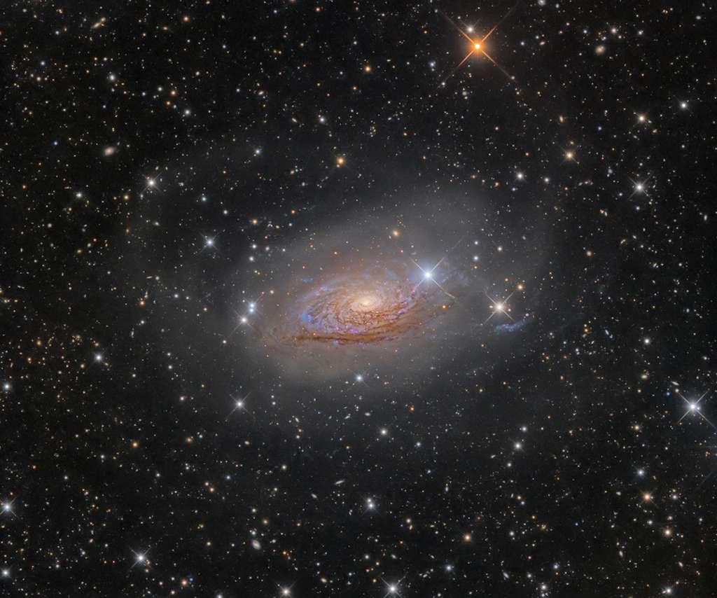 Messier 63, la galaxie du Tournesol, photographiée le 6 avril 2016 à l'observatoire Rozhen, dans les montagnes du Rhodope (Bulgarie), « l'un des endroits les plus sombres d'Europe ». © Oleg Bryzgalov, IAPY 2017