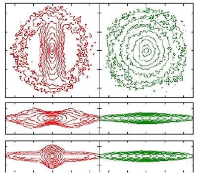 La comparaison de ces deux simulations sur ordinateur permet de voir l'apport du halo dans l'évolution de la galaxie. En haut le disque est vu de face et au milieu et en bas par la tranche. La simulation à droite est faite avec un halo rigide, qui n'évolue pas avec le temps. La simulation à gauche permet au halo d'évoluer en même temps que le disque. Ainsi une barre forte peut se former, ce qui n'était pas possible avec la description simplifiée du halo rigide.