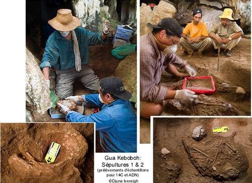 8 - Extraction des sépultures pour analyses ADN.