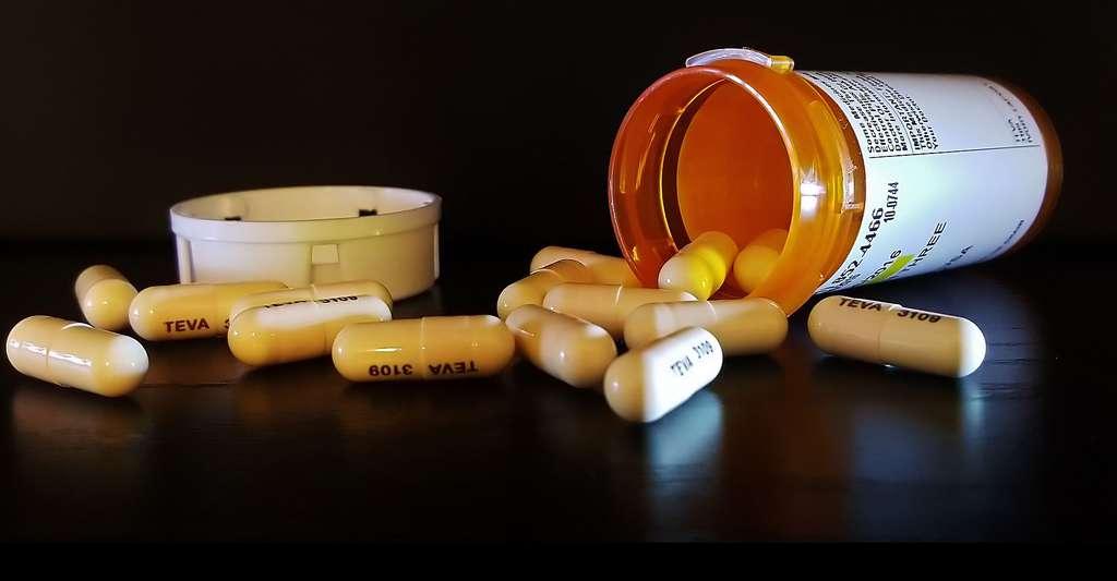 Le libellé d'AMM permet de notifier les précautions d'emploi d'un médicament pour éviter une mauvaise utilisation. © Brett Hondow, DP