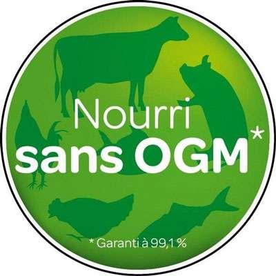 Les OGM sont présents en aquaculture sous la forme de nourriture pour les animaux d'élevage, ou encore de lignées stériles à croissance plus rapide. © DR