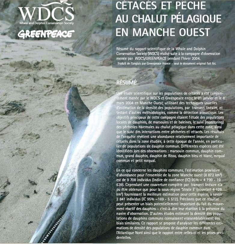Cétacés et pêche au chalut pélagique en Manche ouest. © Greenpeace