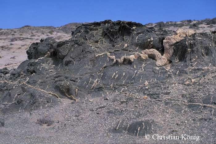 Veine d'anatexite. Ce type de roche est issu de la fusion partielle des roches dans la croûte terrestre. © Christian König, DR