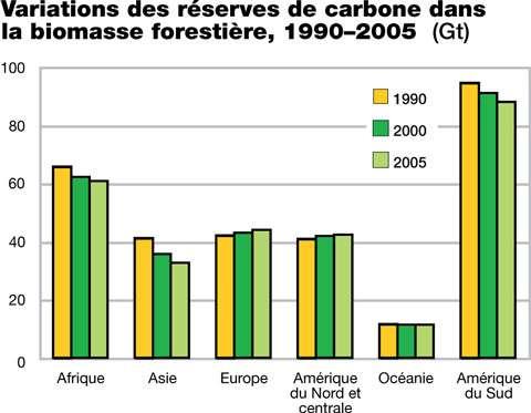 Exemple de déforestation illégale © FAO