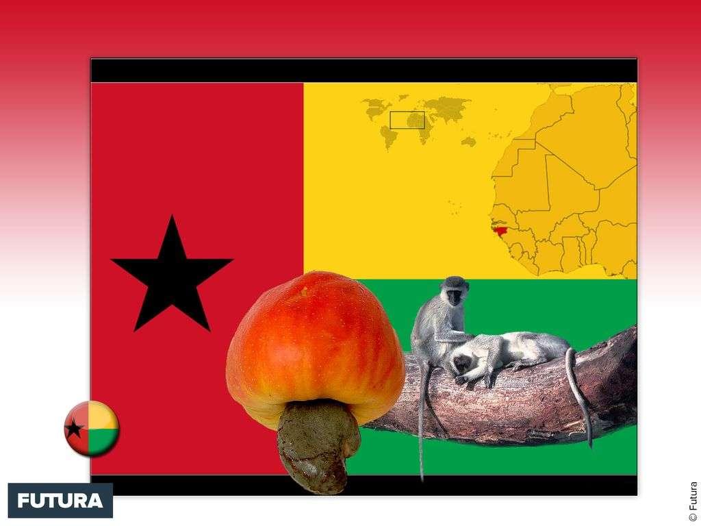 Drapeau : Guinée-Bissau