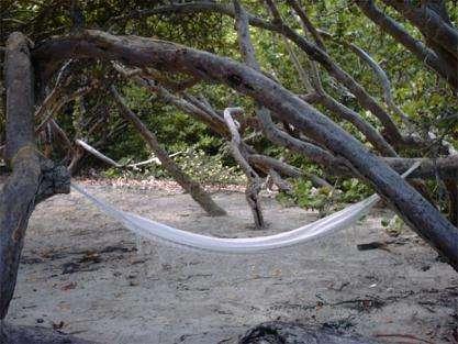 Envie d'une sieste ? N'ayez pas honte, c'est à cause du glucose ! (Crédits : www.martinica.org)