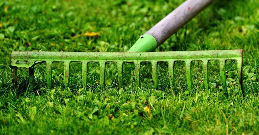 Les outils du jardin. © Alexas Fotos - CCO
