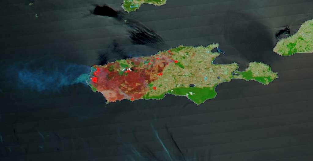 Ces images de la Nasa révèlent l'ampleur de la catastrophe sur l'île Kangourou (Australie). © Nasa Worldview