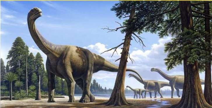 D'après les fossiles retrouvés, les scientifiques pensent que les sauropodes étaient probablement végétariens. Pourra-t-on un jour le confirmer en observant l'un d'eux en plein repas ? © Raul Martin