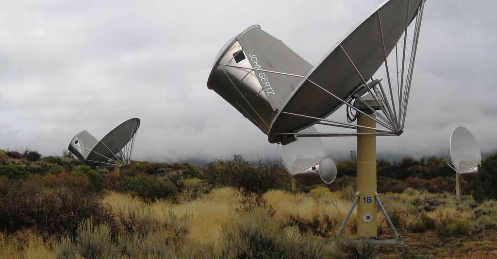 Allen Telescope Array. © Allen Telescope Array, Wikimedia Commons, CC 2.0