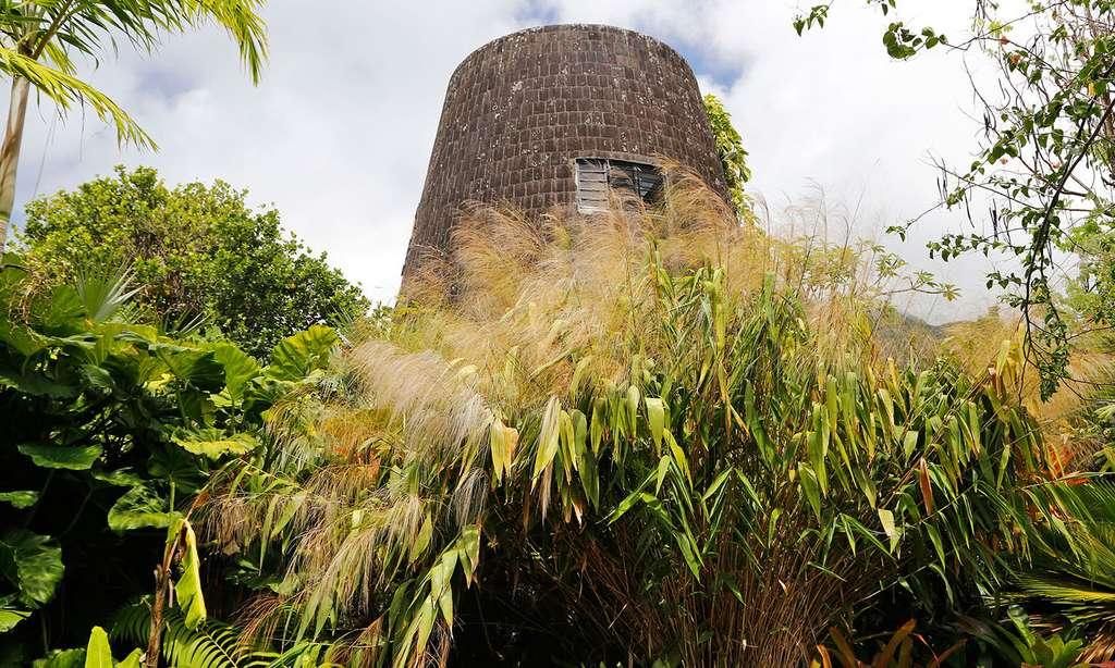 Le Big Ben local de la petite ville de Basseterre. © Antoine, tous droits réservés