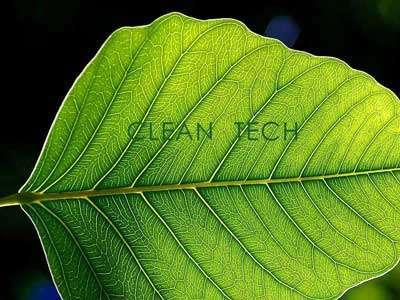Les technologies propres : nouvel enjeu de nos sociétés