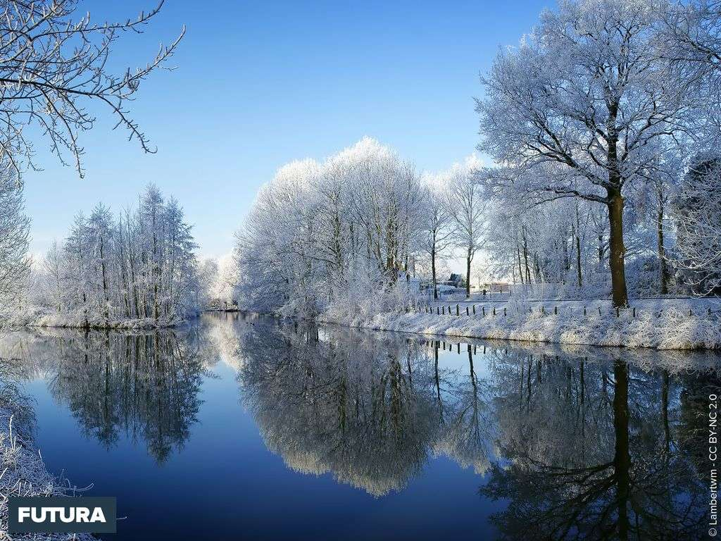 Manteau neigeux