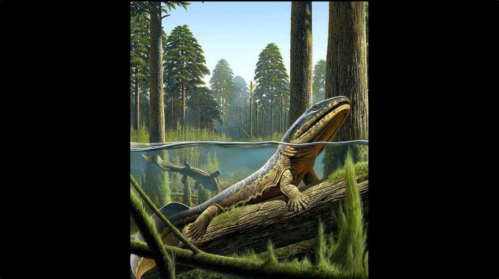 Acanthostega, l'un des premiers tétrapodes