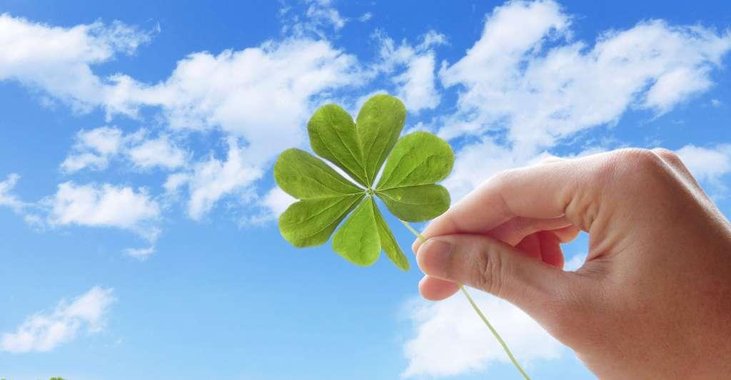 La quête du bonheur : comment vivre heureux ? Ici, un porte-bonheur, le trèfle à quatre feuilles. © RRice, Shutterstock