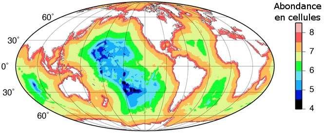 Nombre de bactéries et archées vivant au sein des sédiments marins de la planète (sur 1 m de profondeur). Les valeurs (voir échelle colorimétrique à droite) sont exprimées en log10 de cellules par cm3. © Adapté de Jens Kallmeyer et al. 2012, Pnas