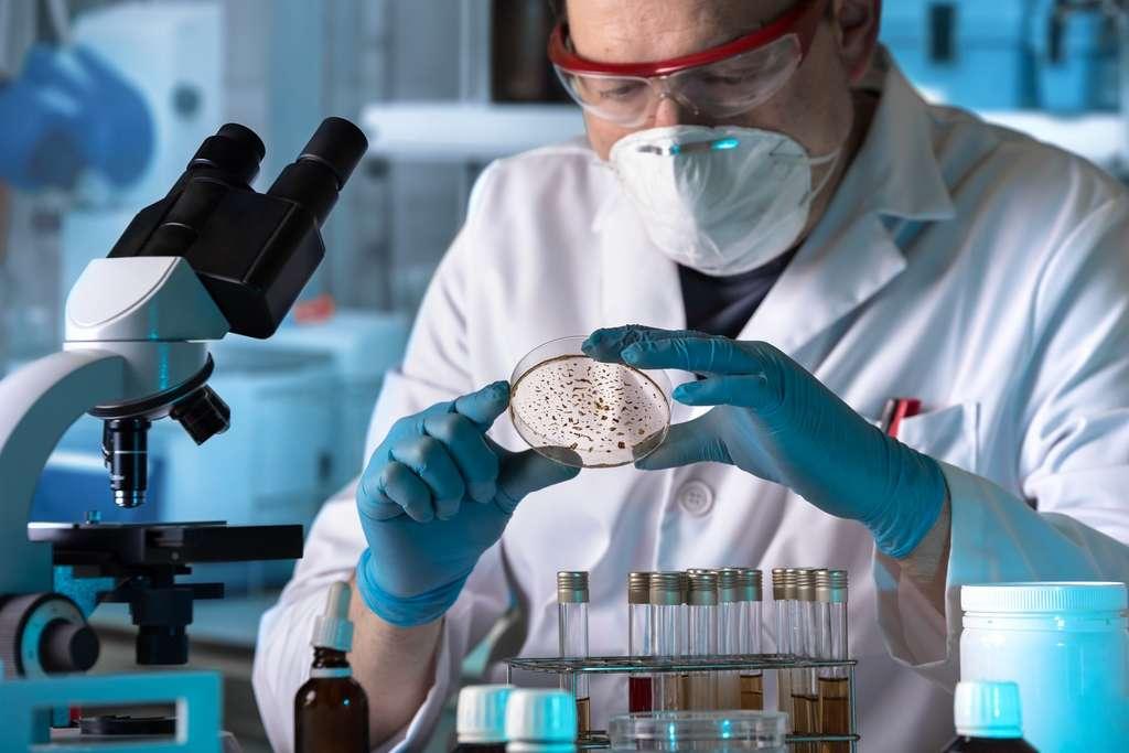 Des chercheurs du MIT et d'Harvard ont découvert grâce à un algorithme d'intelligence artificielle une nouvelle molécule antibiotique capable de tuer des bactéries résistantes aux antibiotiques traditionnels. © Angellodeco, Adobe Stock