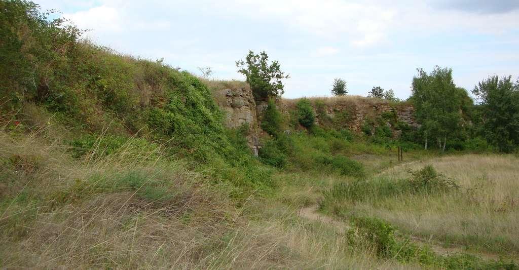 La réserve géologique d'Hettange-Grande, en Moselle. © Bubudu57, Wikimedia Commons, CC by 3.0