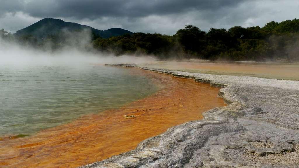 Le Champagne Pool, bassin de 65 mètres de diamètre, au sein du parc géothermique de Waiotapu. © Bruno Cédat