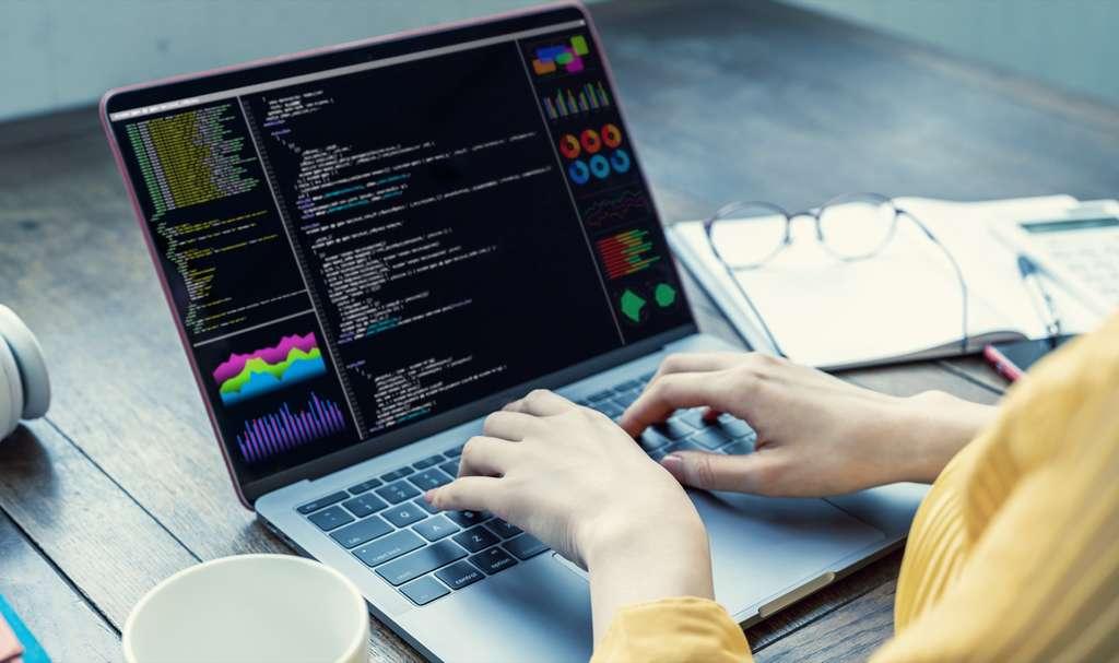 Le langage Python, simple et comptatible, s'impose également dans de nombreux secteurs d'activité. © metamorworks, Adobe Stocks