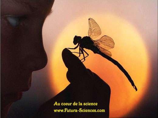 Vivre la science