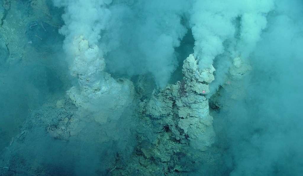 Un exemple des sources hydrothermales découvertes au fond des océans, souvent proches des dorsales océaniques, à des milliers de mètres de profondeur. Des organismes vivent là, dans une eau acide et très chaude, jusqu'à plus de 100 °C. Ces écosystèmes sans lumière fonctionnent grâce à l'énergie de la chimiosynthèse exploitant, par exemple le soufre ou l'hydrogène. La photographie a été prise au fond de l'océan Pacifique, sur l'arc volcanique des Mariannes. © Pacific Ring of Fire 2004 Expedition, NOAA Office of Ocean Exploration, Bob Embley, NOAA PMEL, Chief Scientist