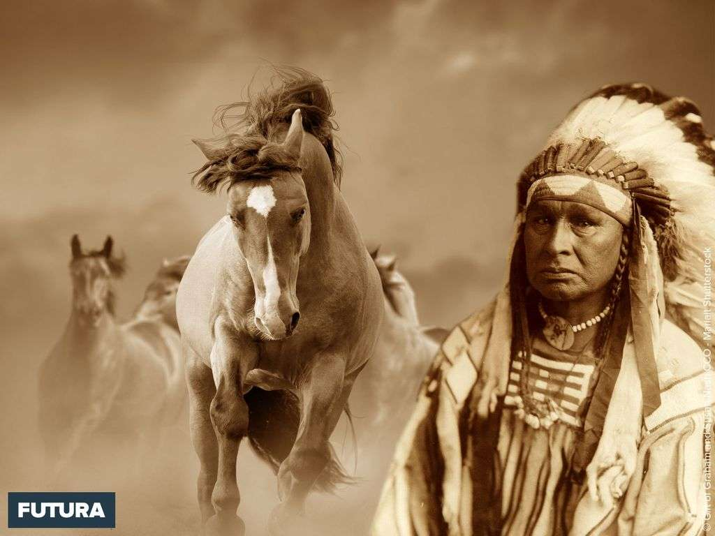 Sioux et chevaux sauvages