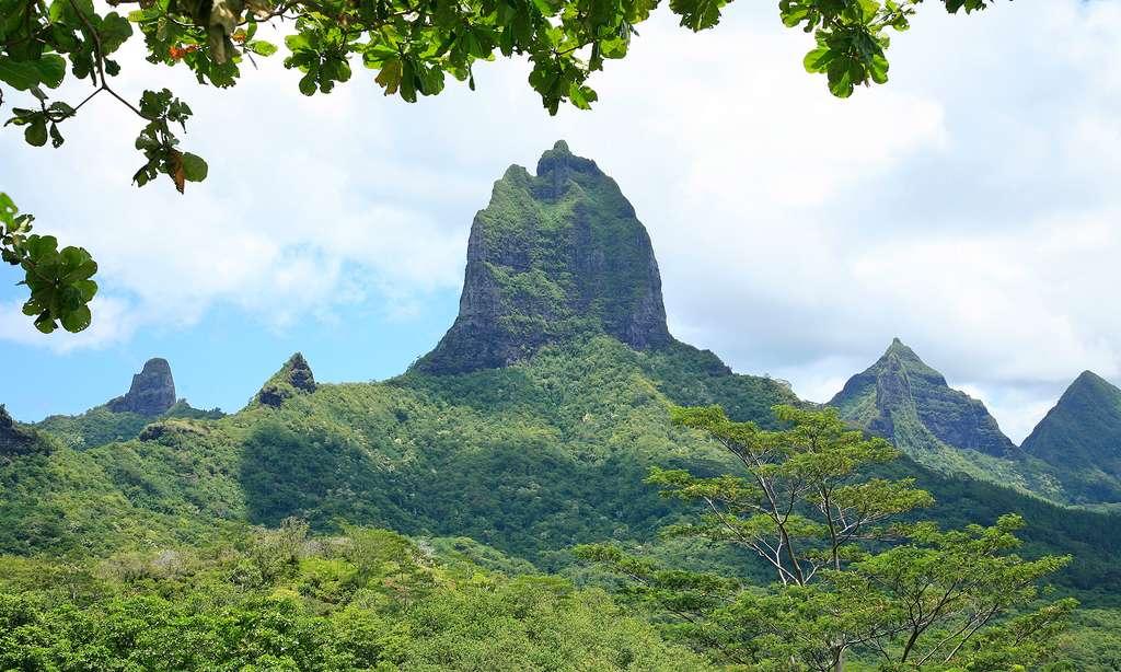Un pic au centre de l'île de Moorea. © Antoine