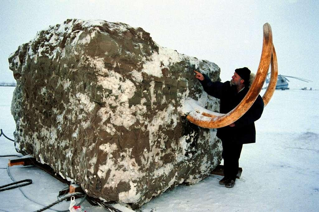 Jarkov dans son bloc de Terre. © Francis Latreille
