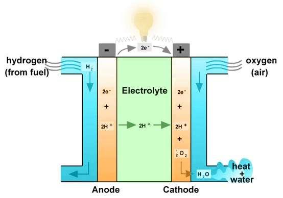 Comme le montre ce schéma récapitulatif du fonctionnement d'une pile à combustible, celle-ci utilise de l'hydrogène (H2) et l'oxygène de l'air (oxygen) pour produire de l'électricité, en ne rejetant que de l'eau (H2O) et de la chaleur (heat). Deux éléments qui peuvent d'ailleurs être réutilisés dans le projet mis en place par Airbus, le DLR et Parker Aerospace. © World Fuel Cell Council