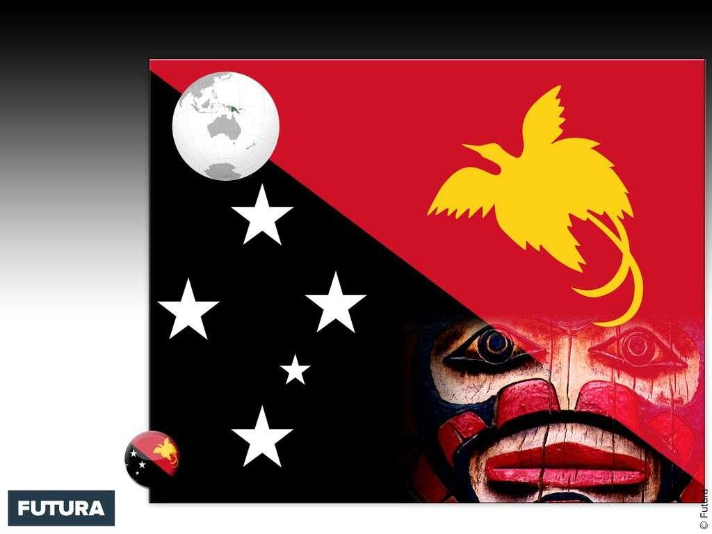 Drapeau : Papouasie-Nouvelle-Guinée