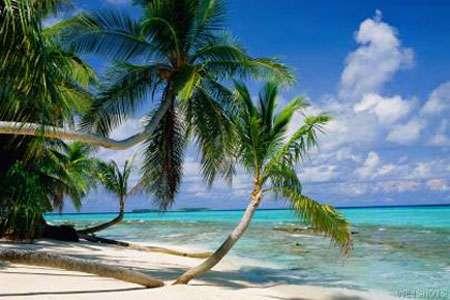 Paysage de Tuvalu. © DR, reproduction et utilisation interdites