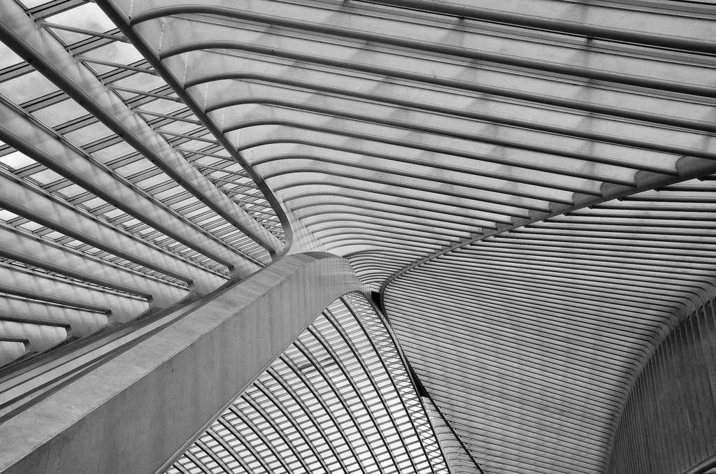 Plafond de la gare de Liège-Guillemins (Belgique), par Santiago Calatrava. © Suraj Garg