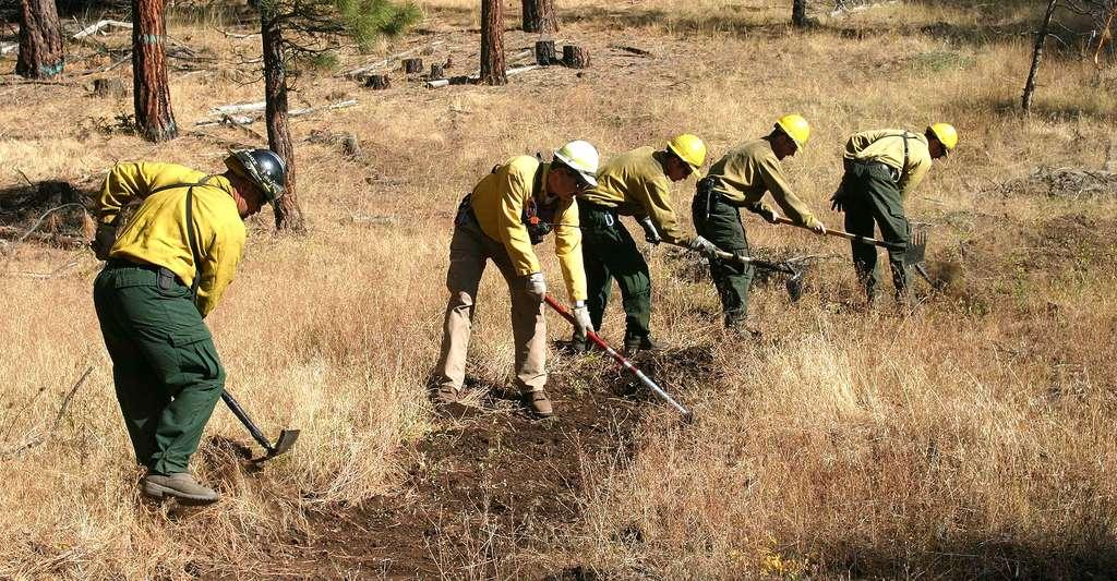 Faire des coupe-feux pour arrêter les incendies. © Swanson Scott, U.S. Fish and Wildlife Service CCO
