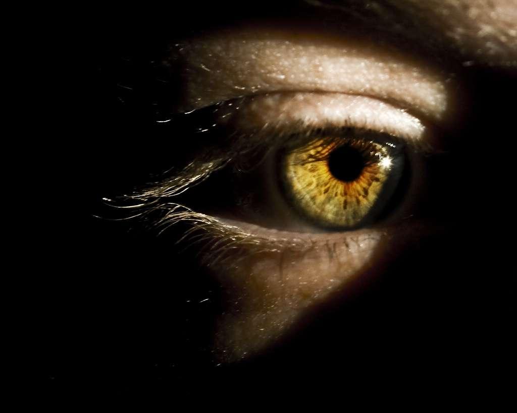 Si l'on considère que parler les yeux dans les yeux est un signe de confiance, nos instincts de primate se rappellent à nous : soutenir un regard peut accentuer un désaccord, et être perçu comme un affront. © Cayusa, Flickr, cc by sa 2.0