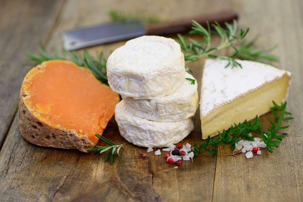 Dans son livre Régimes : la grande illusion, Tim Spector évoque les mites du fromage qui « mangent les microbes et le fromage de la croûte, créant ainsi de minuscules trous qui améliorent la saveur ». Interdite de vente aux États-Unis en raison de leur présence, la mimolette, par exemple, est devenue « un gros succès du marché noir ». Mais « ces mites montrent que le fromage est extrêmement vivant, qu'il est une entité vivante pleine de microbes – des bactéries lactiques spécialisées, les lactobacilles, aux levures et aux champignons responsables des savoureuses veines bleues que l'on trouve dans des fromages tels que le roquefort et le stilton », écrit-il. © photocrew, fotolia