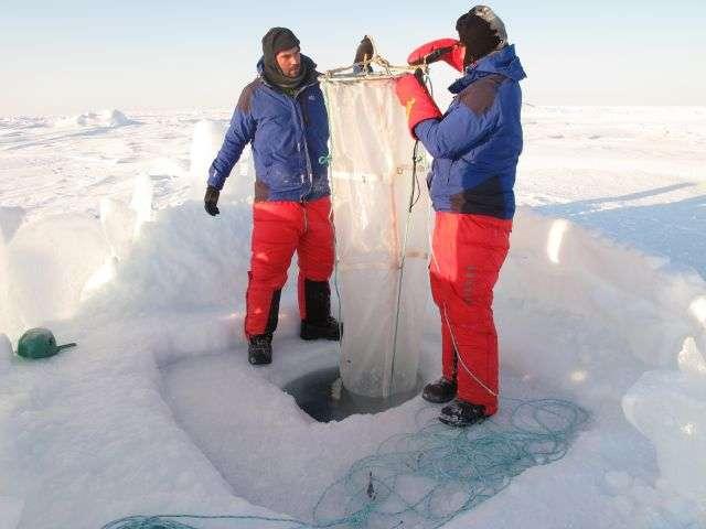 Par le trou de 1,60 m de profondeur, le grand filet à plancton va bientôt être descendu dans l'eau de l'océan Arctique jusqu'à 100 m de profondeur. Un travail à répéter trois fois. Il faudra ensuite descendre un filet, puis la bouteille de prélèvement d'eau, puis la sonde de mesure. © Pôle Nord 2012