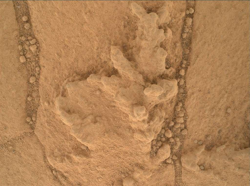 Un gros plan sur l'accumulation de matériaux résistants sur l'affleurement rocheux de Pahrump Hills. L'image a été prise par l'appareil photo baptisé Mahli (Mars Hand Lens Imager), installé au bout du bras de Curiosity, portant différents instruments, dont l'outil de forage. © Nasa/JPL-Caltech/MSSS