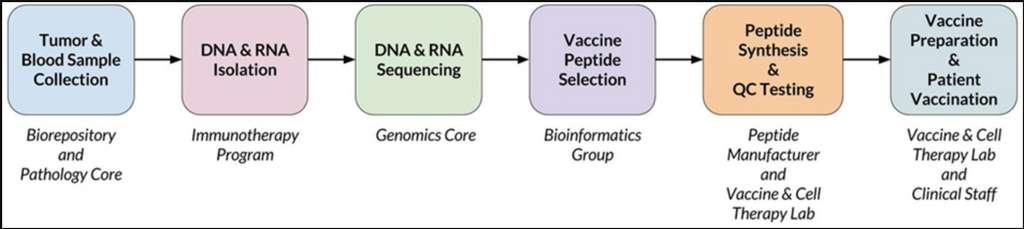 Les étapes qui permettent d'obtenir un vaccin à partir de la tumeur d'un patient. © Alex Rubinsteyn et al. Frontiers in Immunology 2018