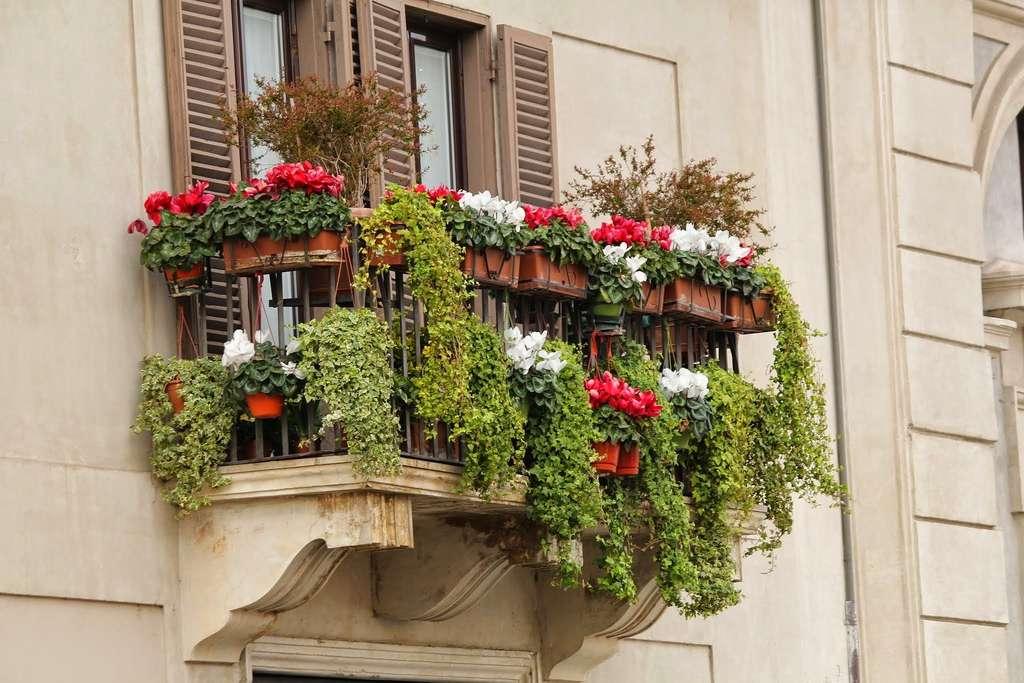 Attention à ne pas tomber dans l'excès : avec trop de plantes sur le balcon, il n'y a plus d'espace pour vous-même! © Pixabay