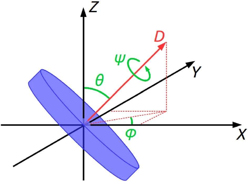 Les différentes forces auxquelles est soumis le disque, avec Z : moment angulaire, θ : angle d'inclinaison et D : axe de rotation.
