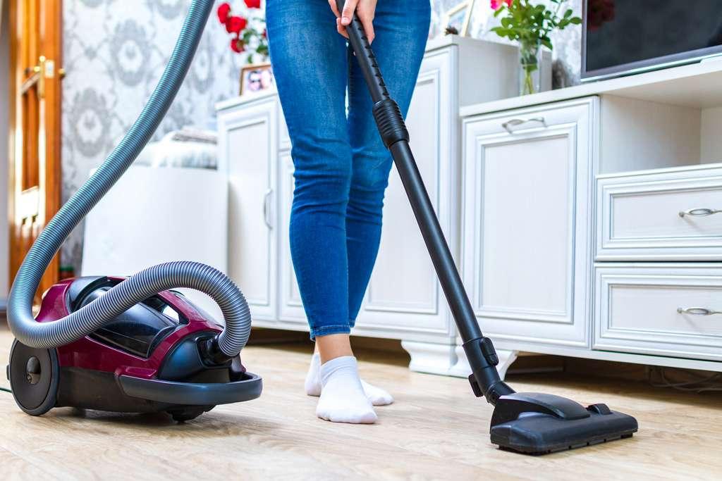 Avec ou sans sac, l'aspirateur traîneau est incontournable pour nettoyer ses sols. © Goffkein, Adobe Stock